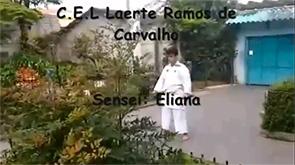 E. E. Prof. Dr. Laerte Ramos de Carvalho